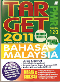 Target BM PMR 2011