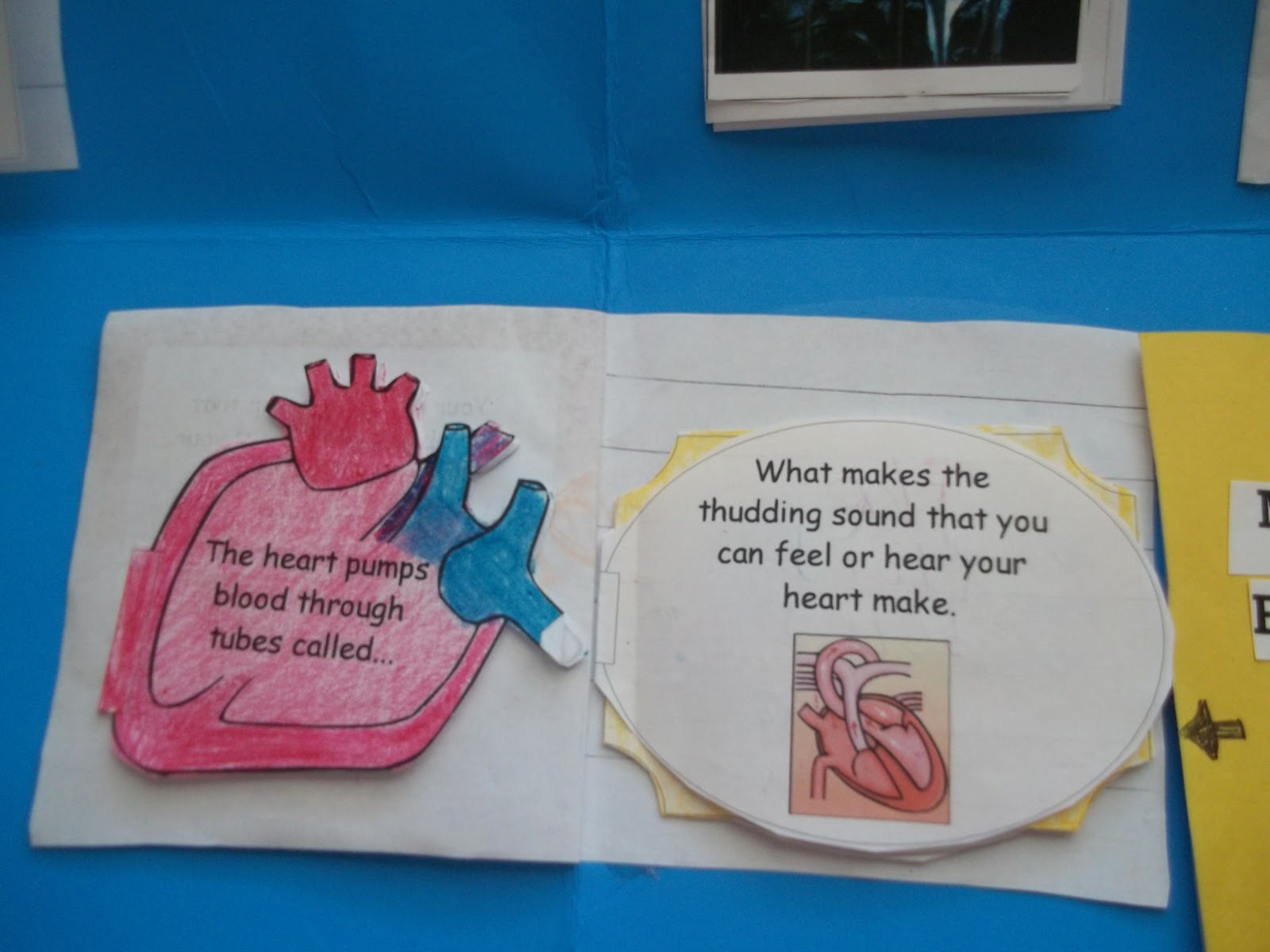 After our discussion and online reading Miss K was able to fill in the ...