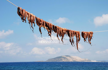 Octopus line on Nisyros island