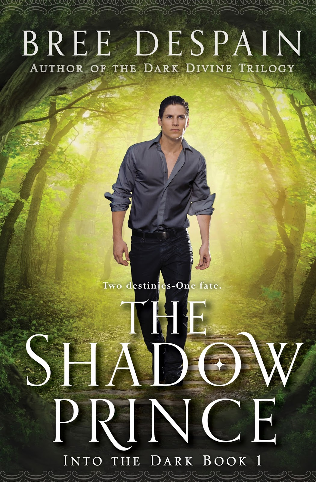 The Shadow Prince Giveaway
