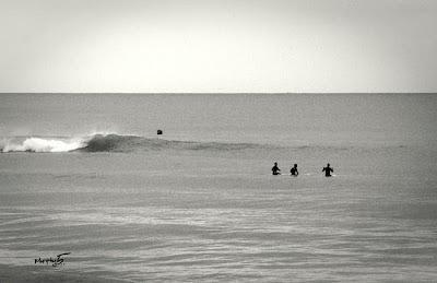 Con un cuarto basta...Longboard clásico y de poca ola