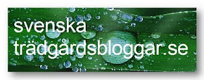 Svenske haveblogs