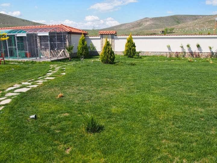 Градина 2