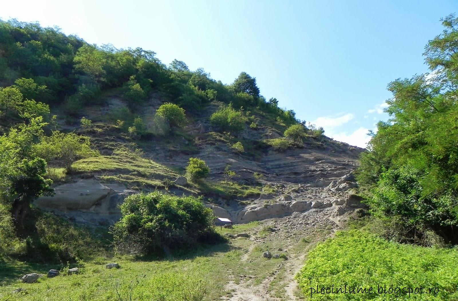 Valea dinozaurilor din Hateg