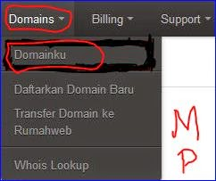 seting dns domain di rumahweb