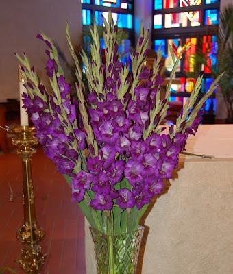 Gladiolus Flowers For Weddings