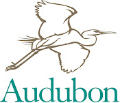 Link to Audubon's Bird Guide