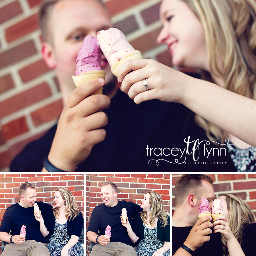 northville mi engagement photographer