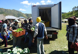 Market Development in TImor Leste