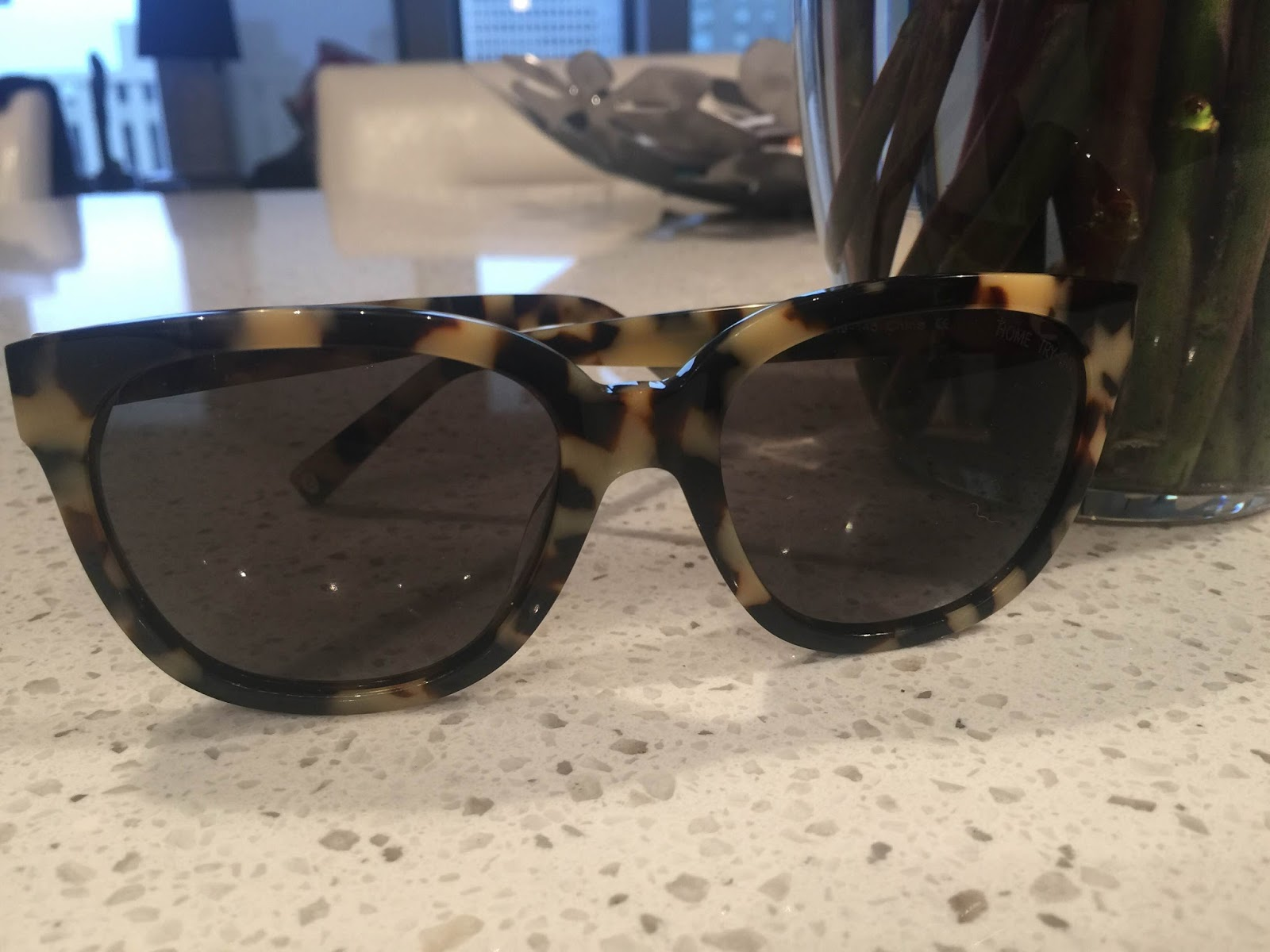 Ormsby Warby Parker