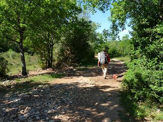 ナッジュ Natges サン・ギエムの道 Chemin de Saint-Guilhem