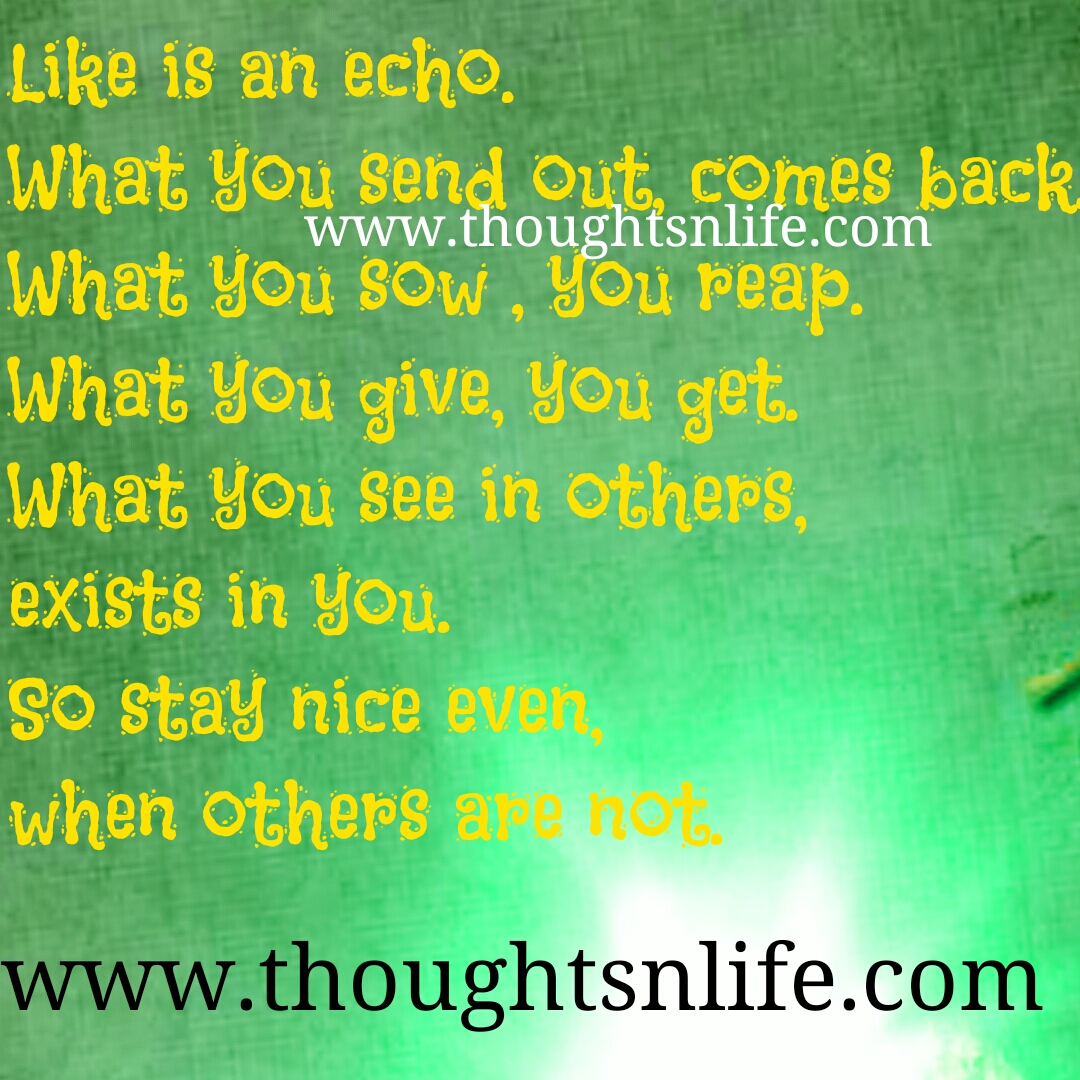 Life Is An Echo Quote Glamorous Life Is An Echo.