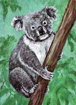 koala painting