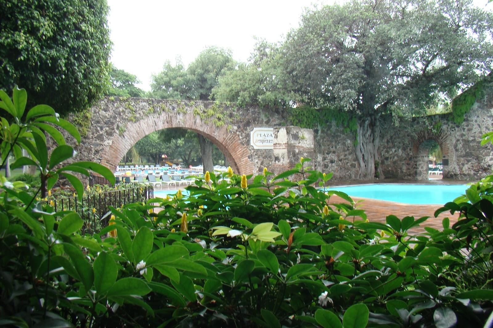 H ctor manuel garc a caballero veterinario morelos sede for 7 jardines guanajuato