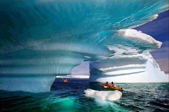 Glacier Bay, the Gulf of Alaska