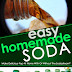 Easy Homemade Soda - Free Kindle Non-Fiction