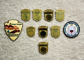 Tessa earned eight badges and two patches for her efforts as a Junior Ranger. All but two badges (Walnut Canyon and Navajo National Monument) were unique in design. Petrified Forest National Park and Walnut Canyon offered patches in addition to badges.