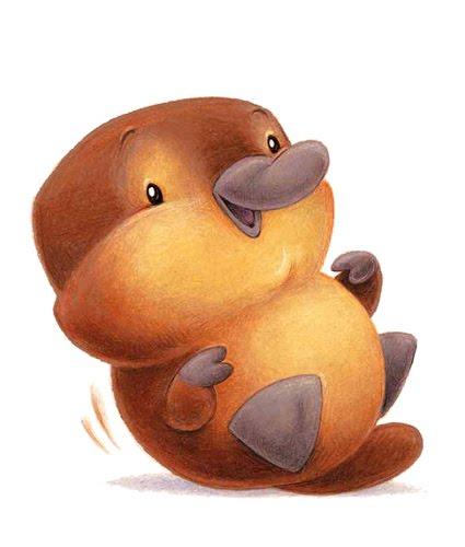 Cute Baby Platypus