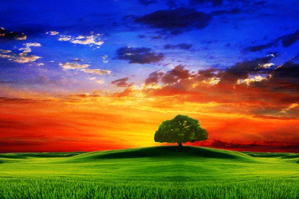 the best nature wallpaper best wallpapers