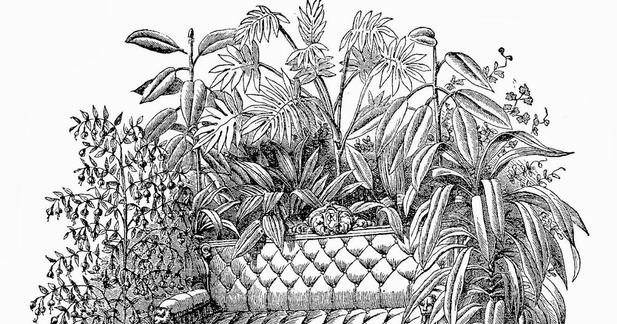 Digital stamp design free botanical digital stamps for Design of ornamental plants