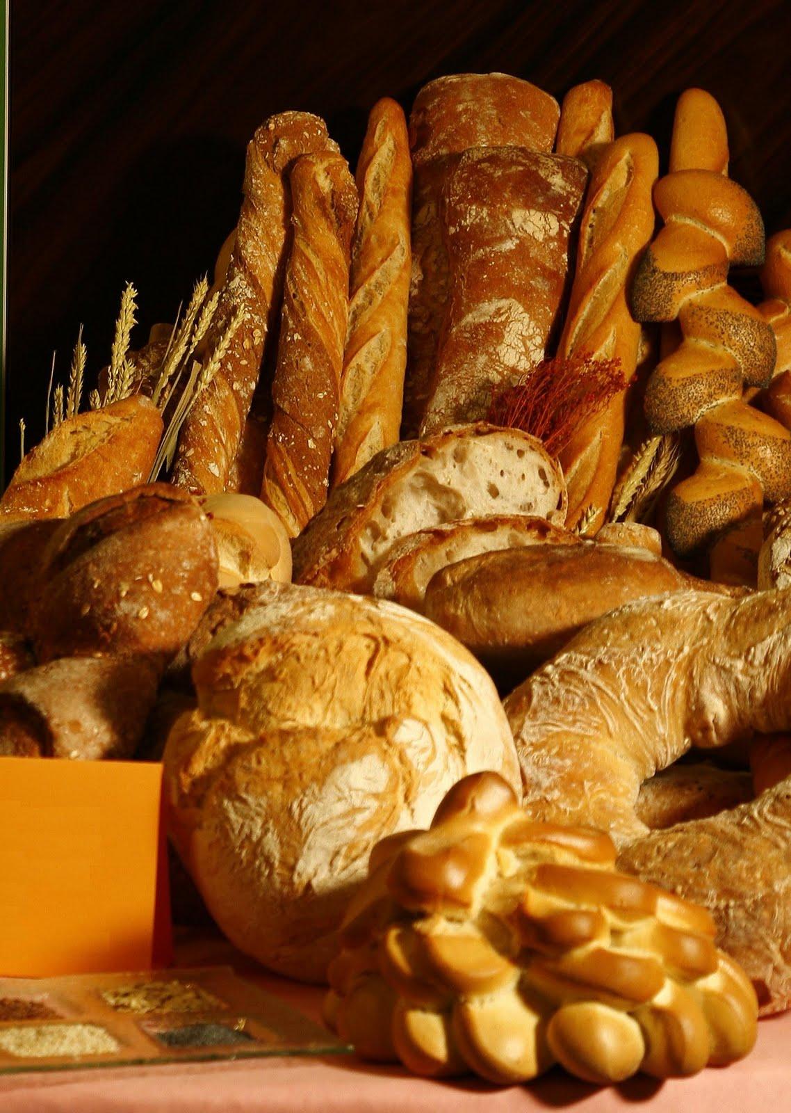 elaboracion de pan