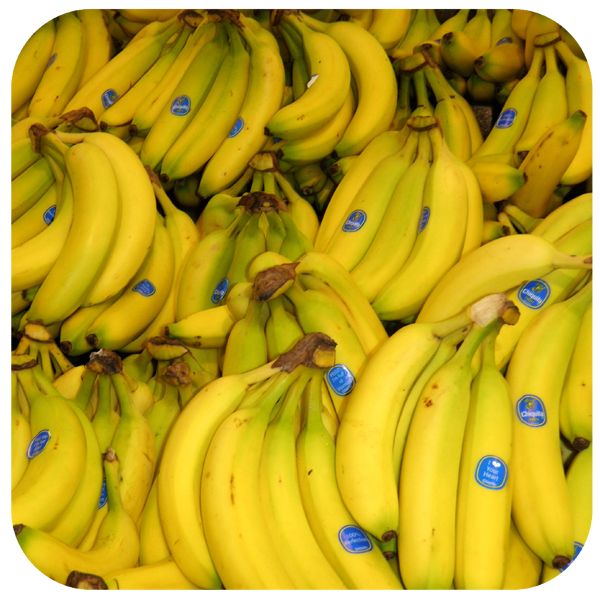 rounded corner photo of bananas with a transparent background
