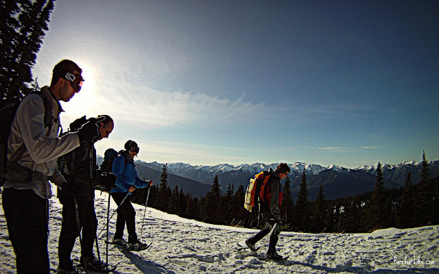 hurricane ridge group snowshoe
