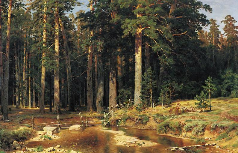 Nature Vs Naturalism