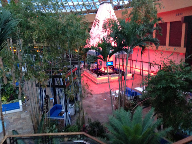 Harrah's The Pool After Dark