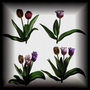 http://3.bp.blogspot.com/-BuSSVufmESU/UwVhe-45RHI/AAAAAAAACmM/mlV60k4ILF4/s1600/Mgtcs__Tulips.jpg