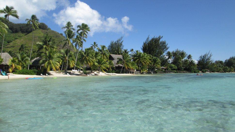 Plage de sable blanc bordée de cocotiers à Hauru, Moorea