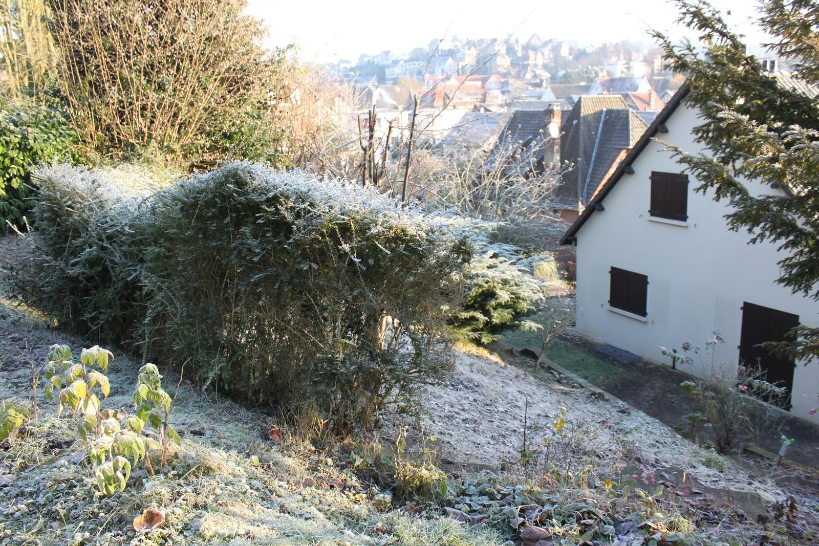 Mon jardin imparfait couleurs d 39 hiver for Le jardin imparfait