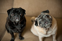 And Pugs
