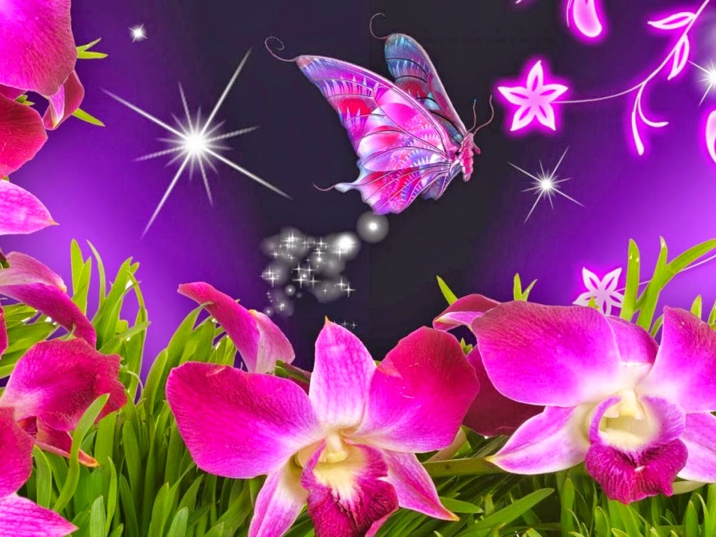 Latest Flowers HD Wallpapers Beautiful Butterflies And