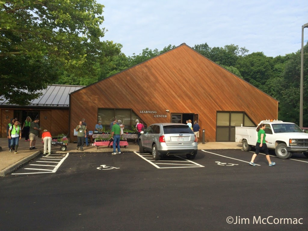 Ohio Birds and Biodiversity: Butterfly Workshop recap