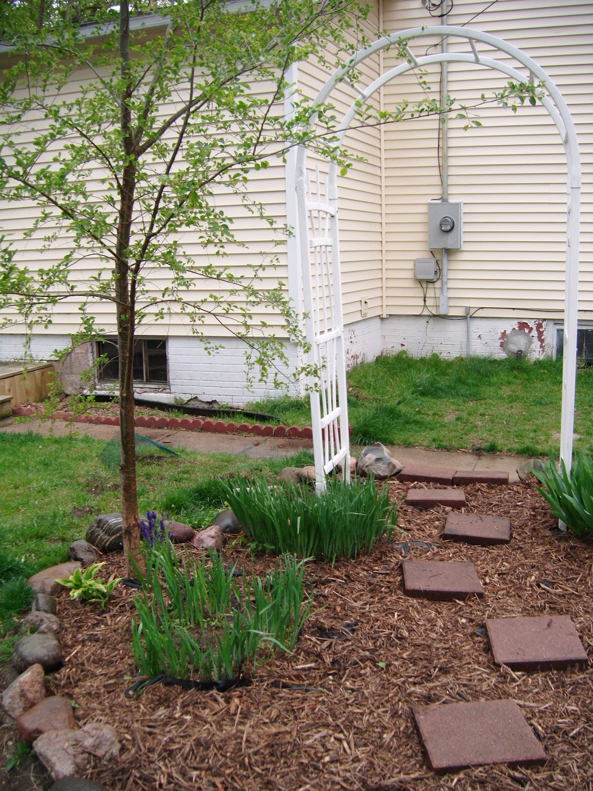 ashley diy  diy landscaping on a dollar store budget