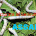 Directorate of Sericulture, Assam Recruitment for Junior & Section Assistant 2013