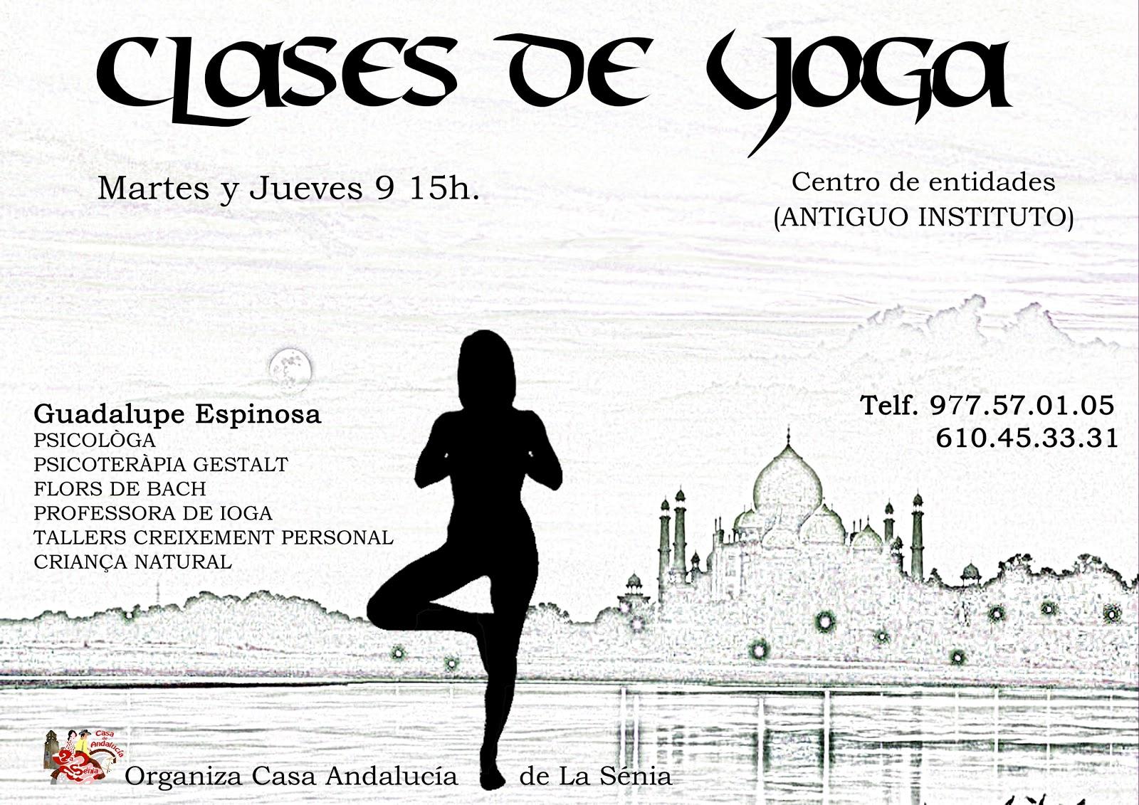 Casa de andaluc a la s nia curso 2012 2013 - Clases de yoga en casa ...