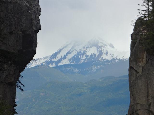 mount garibaldi from chief trail