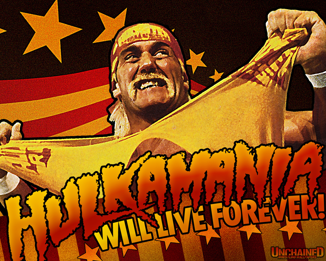 hulk hogan wallpapers - photo #4
