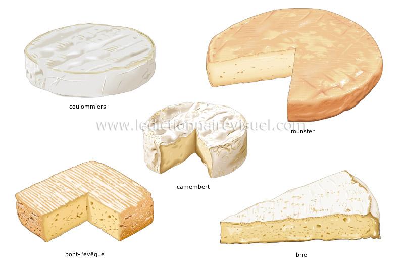 Le fran ais pour tous les diff rents types de fromages - Tout type ou tous types ...