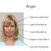 Comment identifier la colère le visage