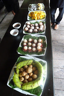 Fruita laosiana