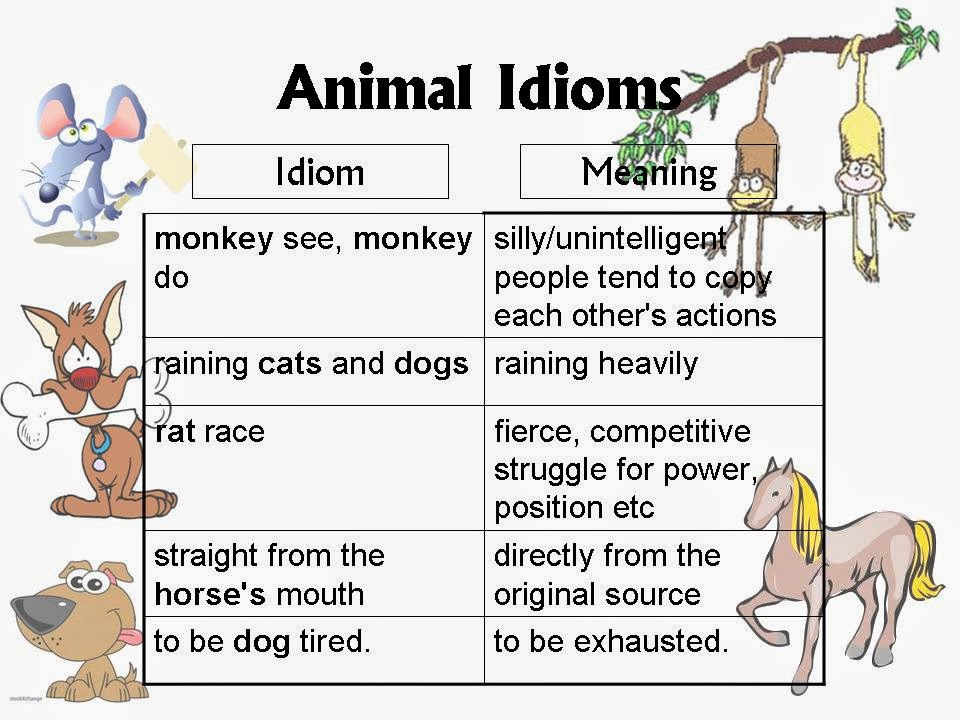Click On Animal Idioms