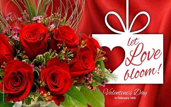 Happy-Valentines-Day-Quotes-Wishes