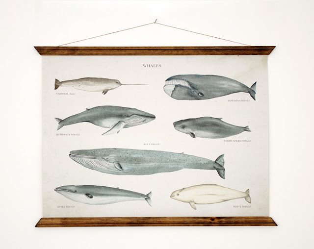Whales A3 Canvas poster by ARMINHO