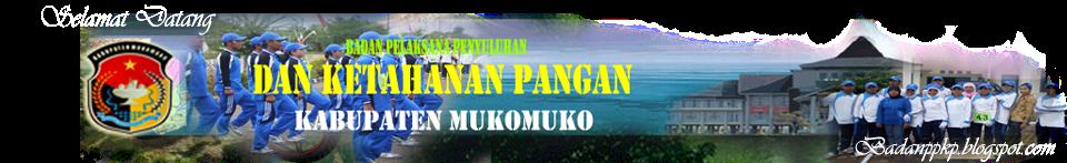 ADMIN BP2KP.Mukomuko