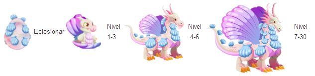 imagen del crecimiento del dragon concha