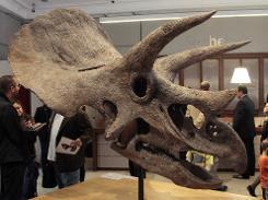 Ausência de dinossauros nos trópicos foi causada por tempo quente e seco