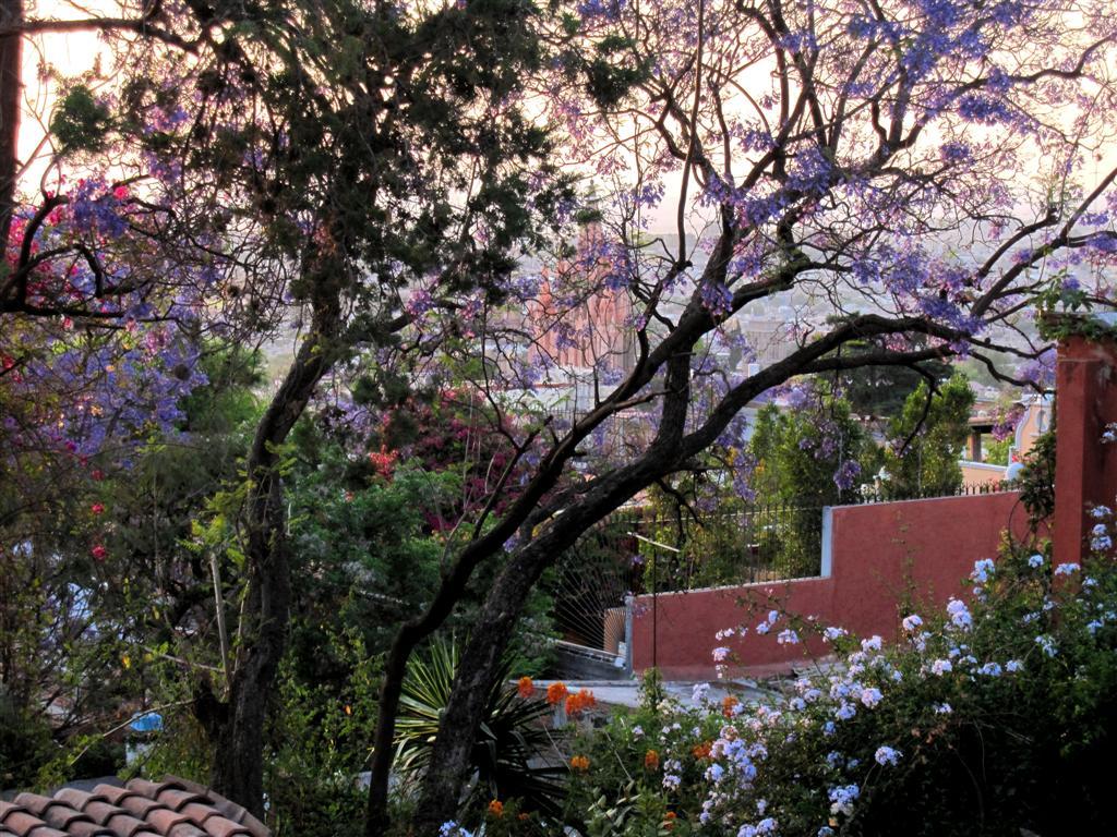 Babsblog Cost Of Living In San Miguel De Allende